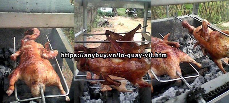 Hình ảnh vịt nướng bằng Lò quay vịt nướng