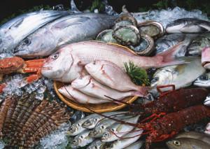 Hải sản sạch