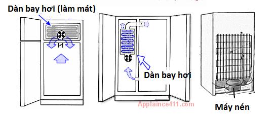 Vị trí dàn bay hơi, máy nén trong tủ lạnh