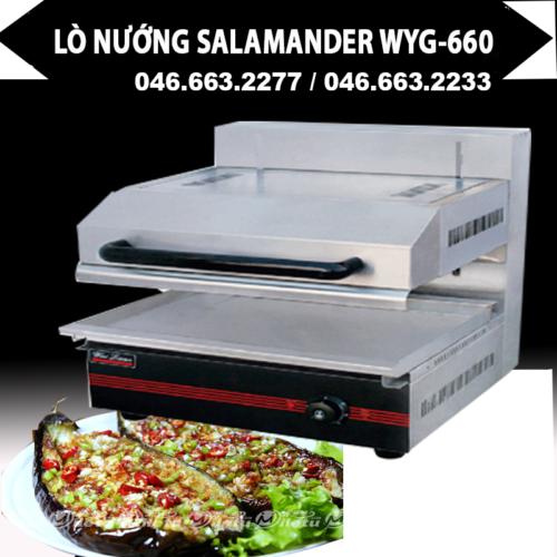 Lò nướng salamander điện WYG-660