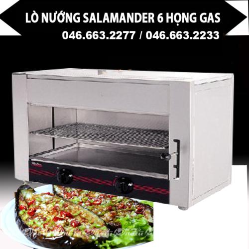Lò nướng Salamander gas WYG-745