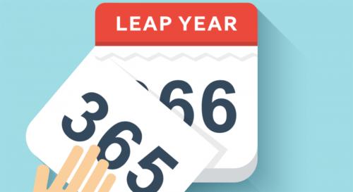 1 năm có 365 ngày